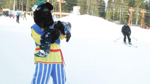 Костюм медведя на детский праздник