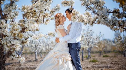 Красивая свадьба на природе